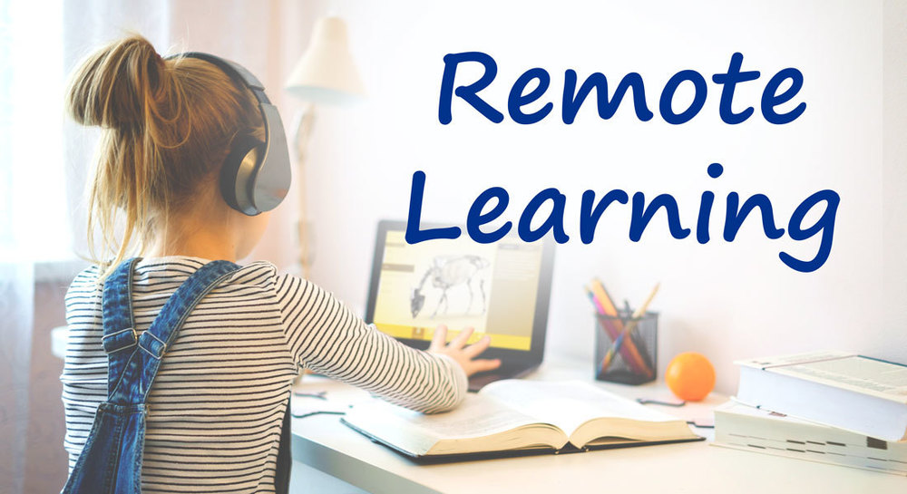 Remote (virtual) Learning Information